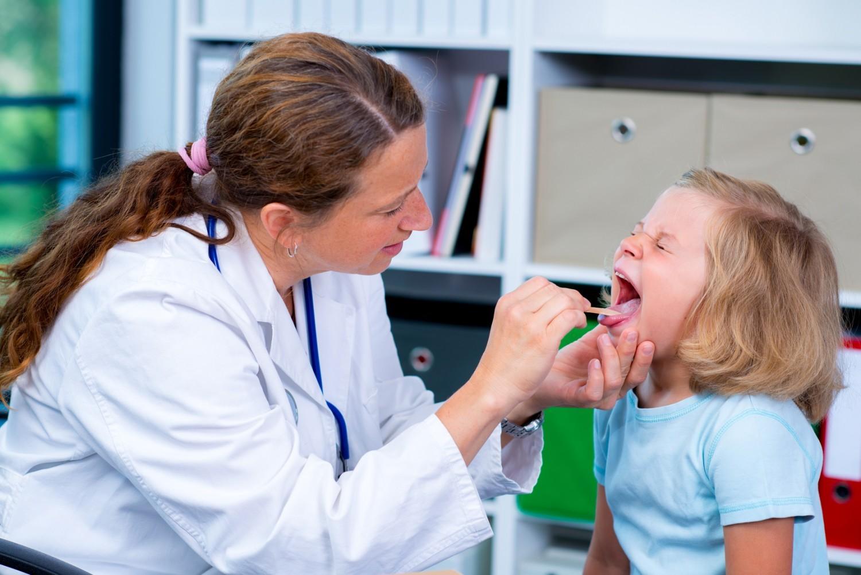 Blog santé : qu'est ce que les organes génitaux internes et externes ?